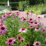 Hovdala_Gardens